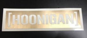 hoonigandecarl